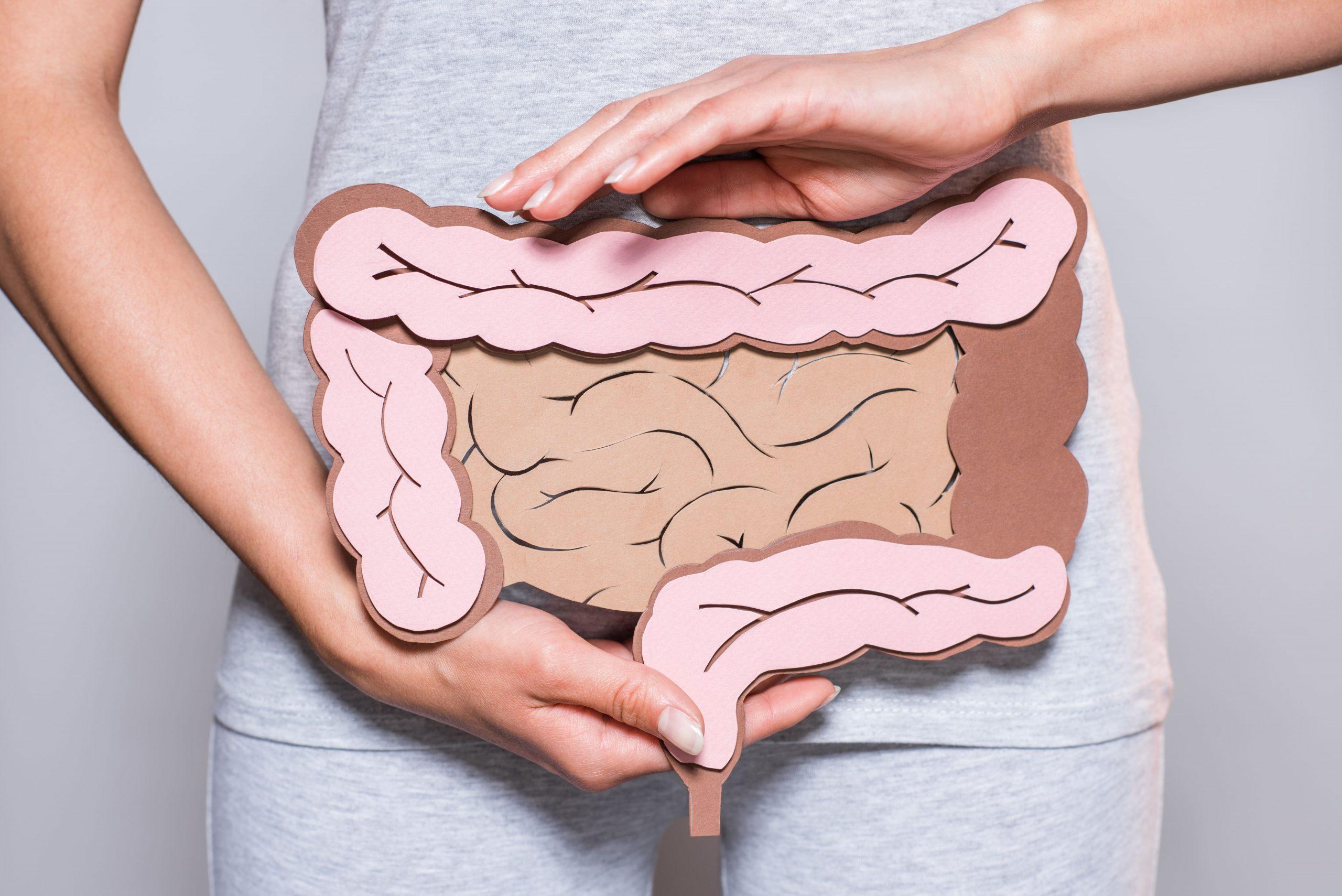 Terapia nutrizionale per Insufficienza intestinale